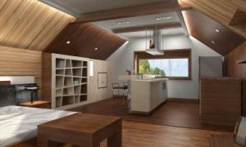 Гостиная спальня кухня в одной комнате. Отрицательные моменты