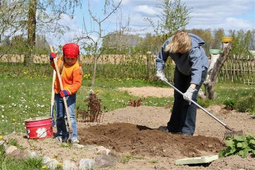 Лайфхаки для дачи и сада своими руками. Дачные хитрости: 10 лайфхаков, способных облегчить жизнь
