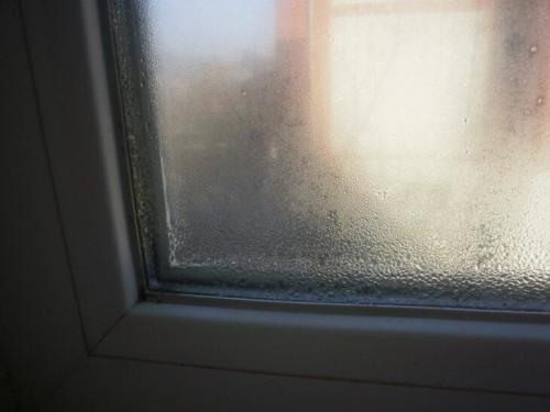 Сильно потеют окна пластиковые. Почему потеют окна изнутри в частном доме: выясняем и устраняем причину