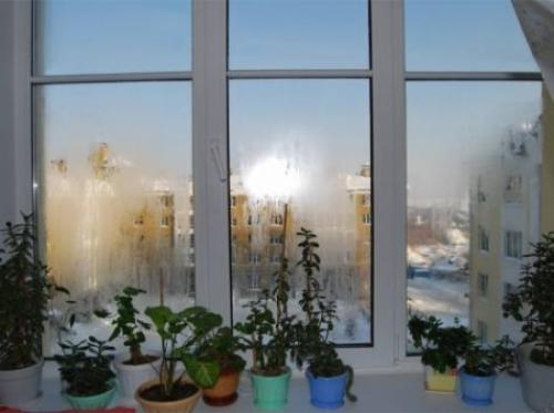 Потеют окна в квартире народные средства. Средство от запотевания окон в доме